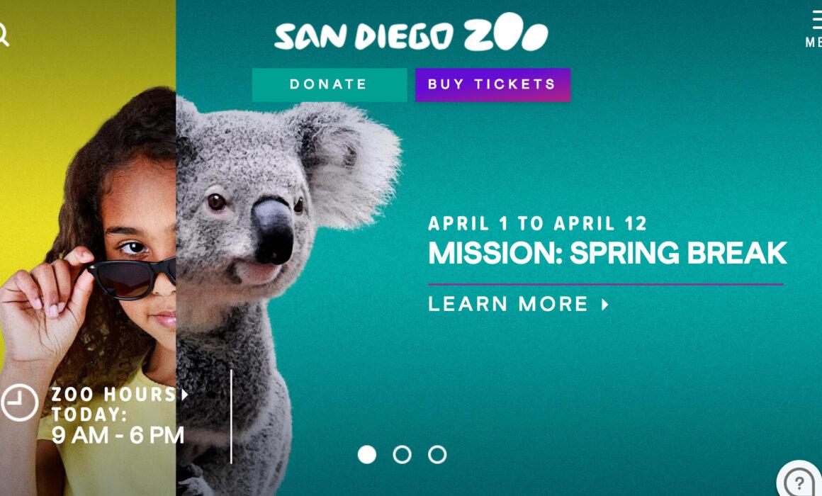 San Diego Wardrobe Stylist | San Diego Zoo Spring Break Shoot